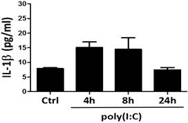 Activation of TLR3 Induces Osteogenic Responses in Human