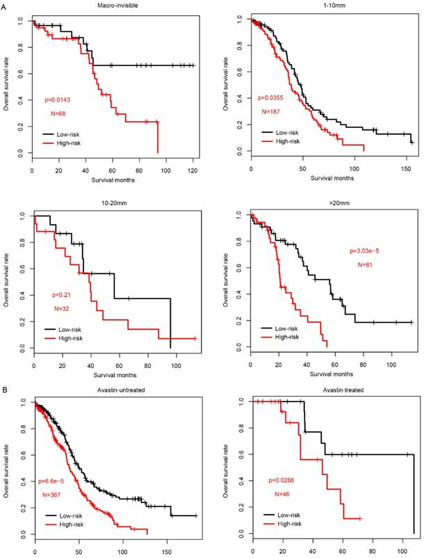 Seven Genes Based Novel Signature Predicts Clinical