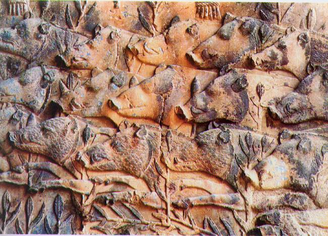 A sassanid rock relief of boar hunting