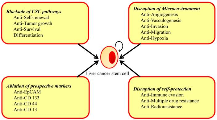 Hepatic cancer markers