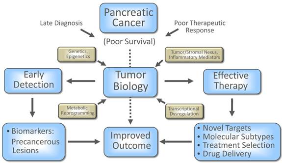 pancreatic cancer biomarkers)