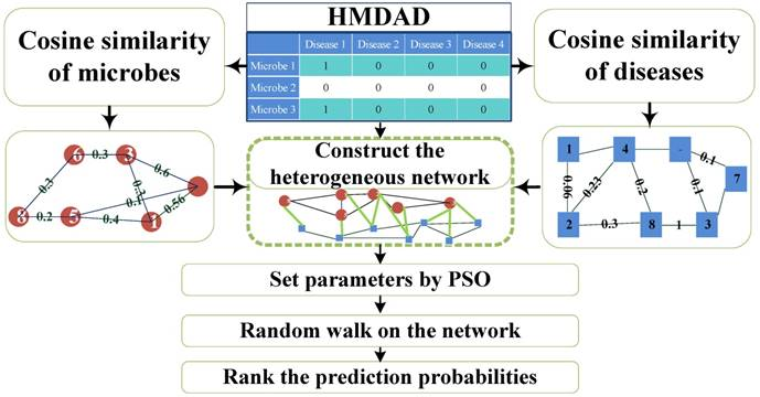 PRWHMDA: Human Microbe-Disease Association Prediction by Random Walk